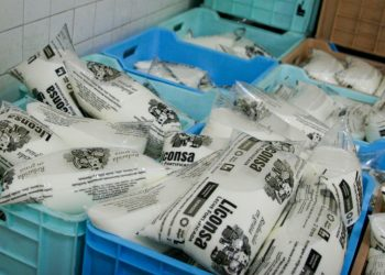 MÉXICO, D.F., 26ENERO2009.- El jefe de Gobierno del Distrito Federal, Marcelo Ebrard, supervisó esta mañana la entrega de vales de despensa a beneficiarios de leche Liconsa en la colonia Obrera; dijo que la entrega de 650 mil vales concluirá el 14 de febrero en todas las lecherías de la ciudad FOTO: RICARDO CASTELAN/CUARTOSCURO.COM
